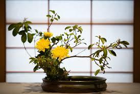 Ikebana - flower arrangememt